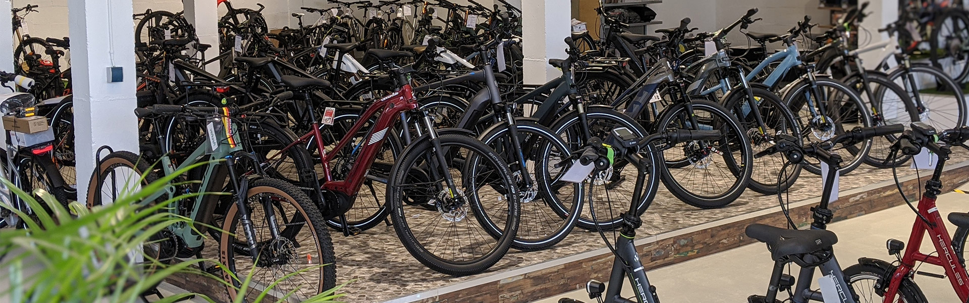 Der Shop der e-motion e-Bike Welt Bad Kreuznach