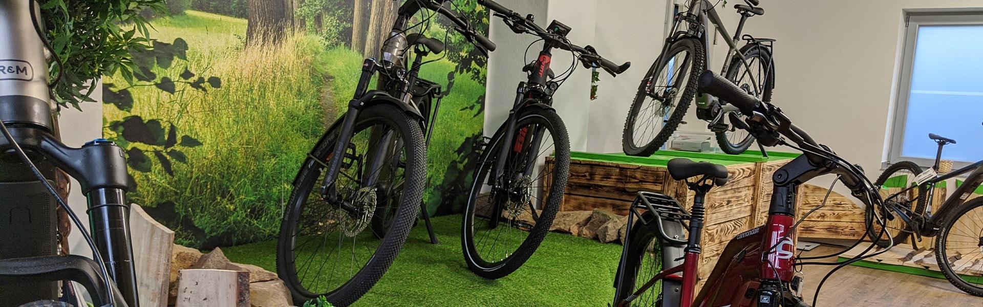 Der Shop der e-motion e-Bike Welt Halver