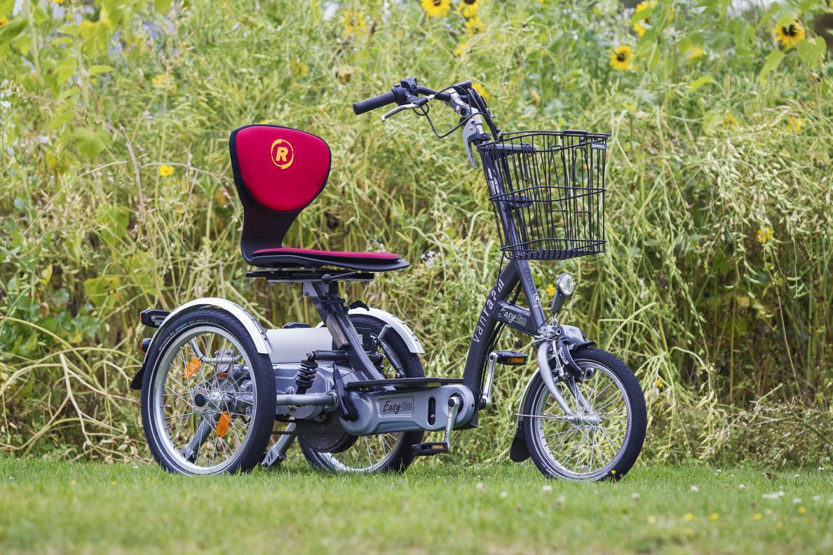 Easy Go Scooter Dreirad von Van Raam
