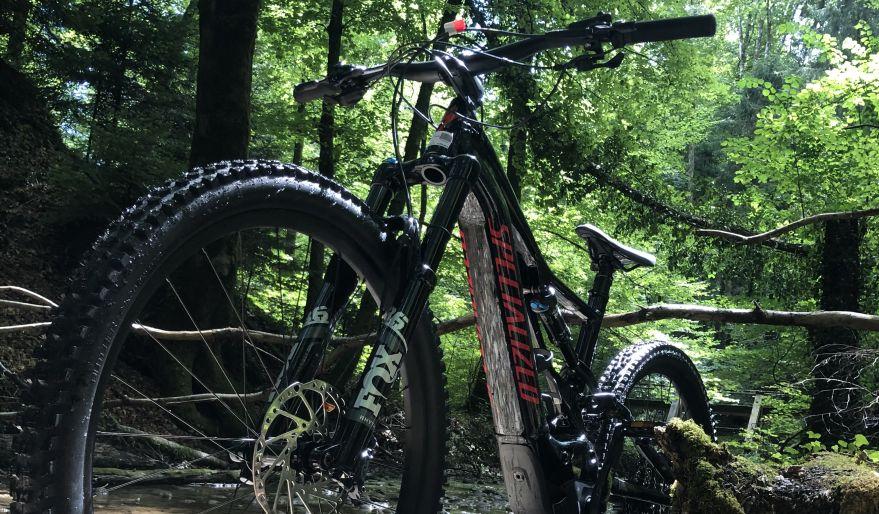 Das neue Specialized Turbo Levo Comp im Wald