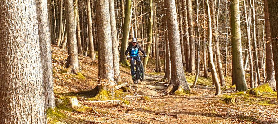 Mann fährt auf seinem e-Mountainbike durch den Wald