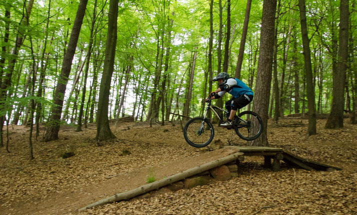 e-MTB Fahrkurs in der e-motion e-Bike Welt Worms