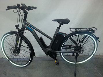 Raleigh Stoker Miet e-Bike in der e-motion e-Bike Welt München-West