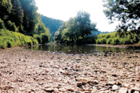 Segway Tour Tuttlingen Flussdurchfahrt Tour