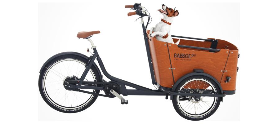 Babboe Go Mountain mit Hund