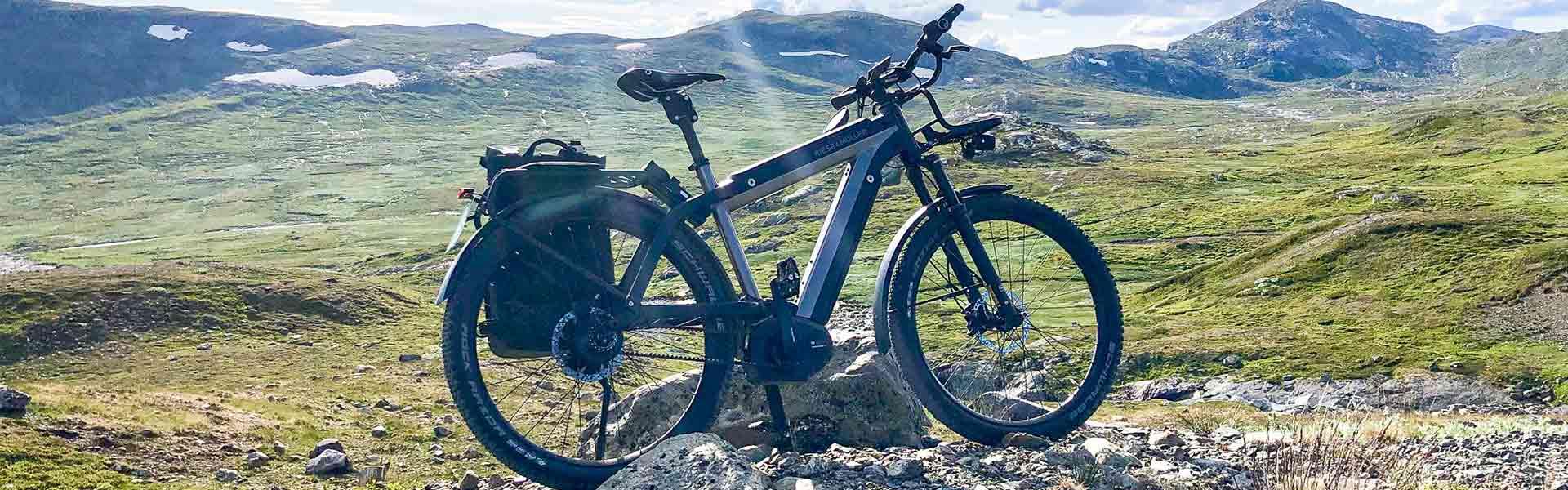Riese & Müller e-Bike Tönisvorst