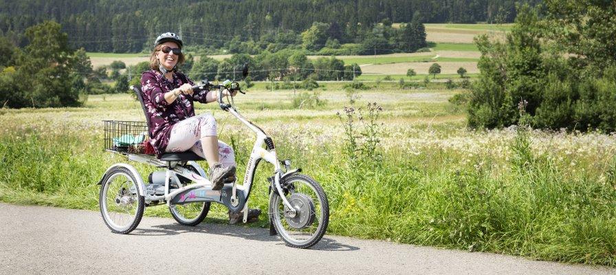 Easy Rider Dreirad
