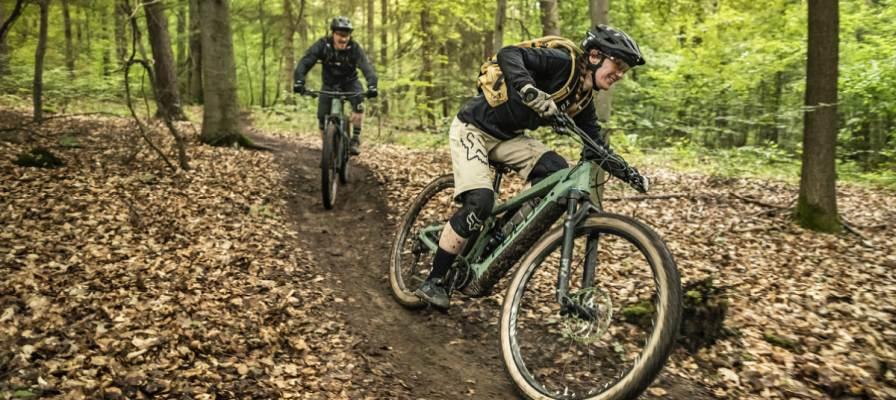 Zwei e-Biker fahren auf dem Thron2 durch den Wald