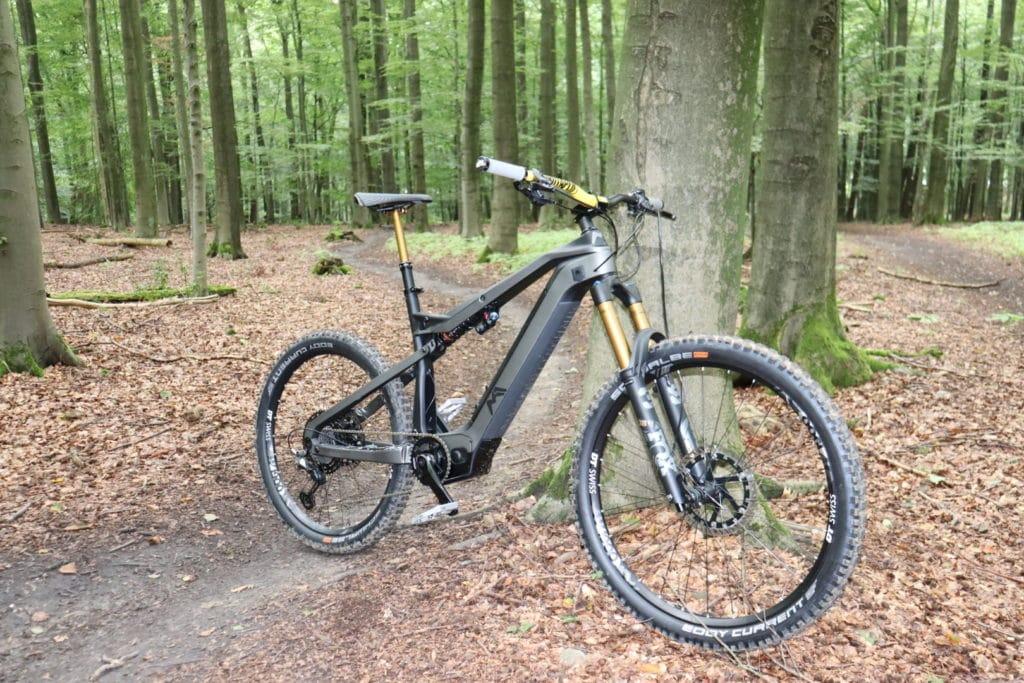 M1 Erzberg lehnt an einem Baum im Wald
