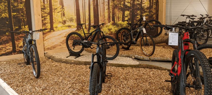 Die e-motion e-Bike Welt Westhausen von Innen